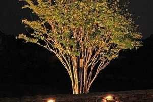 019-lighting-tree